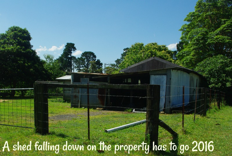 31-dec-a-shed-falling-down-on-the-property-has-to-go-2016.jpg