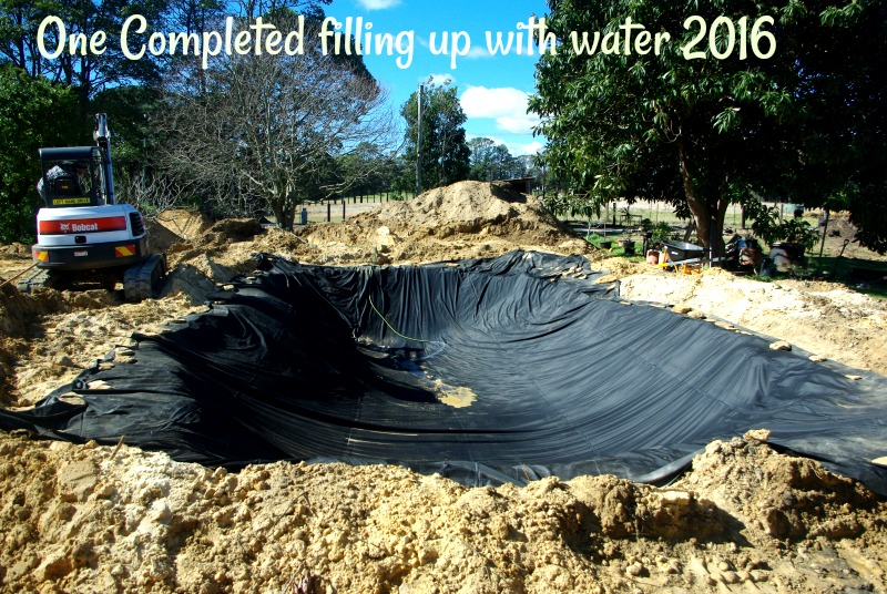31-dec-one-completed-filling-up-with-water-2016.jpg