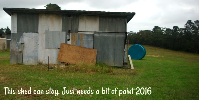 31-dec-this-shed-can-stay-just-needs-a-bit-of-paint-2016.jpg