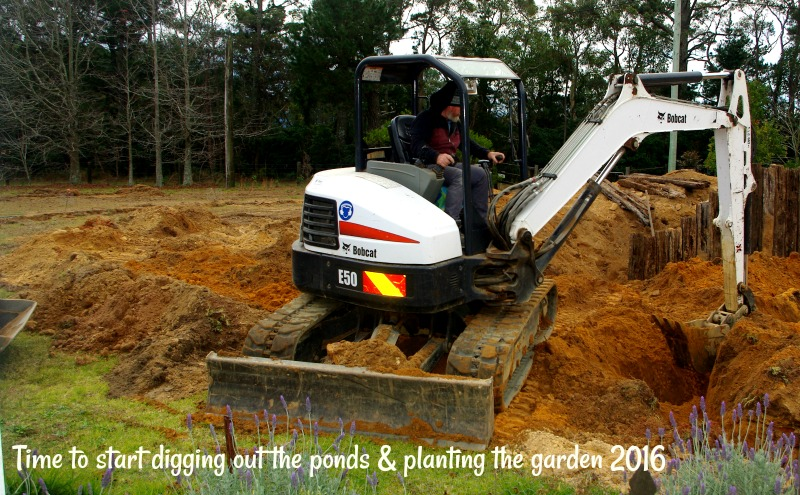 31-dec-time-to-start-digging-ou-the-ponds-planting-the-garden-2016.jpg