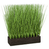 "A-184740 - 19"" Planted Onion Grass with Foam Base"