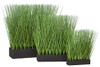"Grouping of Planted Onion Grasses - Sizes 11"" Tall,  16"" Tall, 19"" Tall with Rectangle Foam Bases"