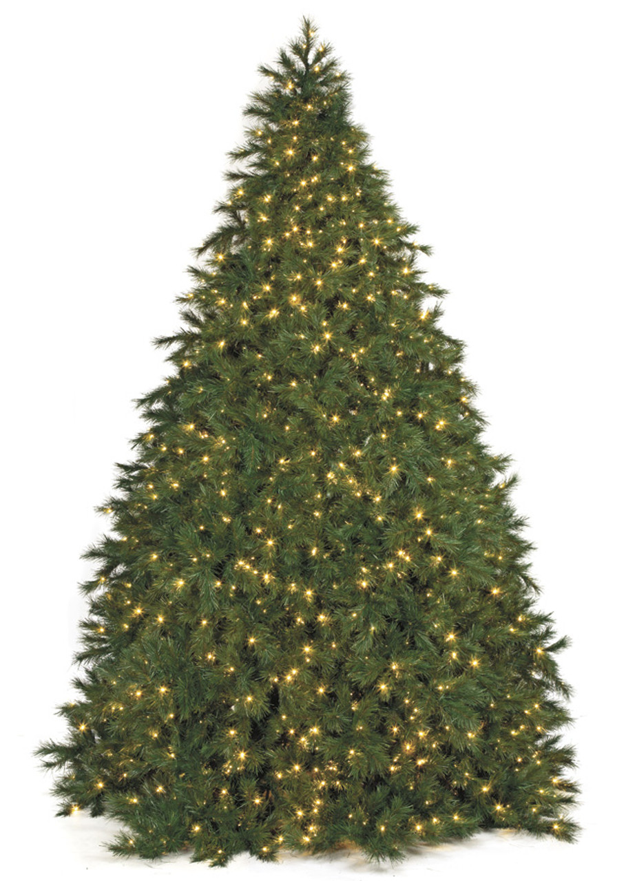 24 commercial pine tree 22142 tips 11900 warm white 5mm led lights 155 width