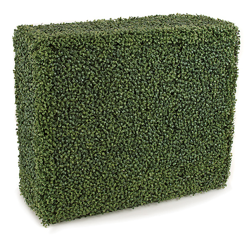 36 x 12 x 30 Inches Outdoor Boxwood Hedge - Traditional Leaf