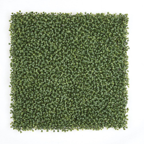 A-135460