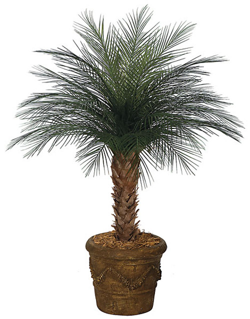 4' Areca Palm Tree x 33 Fronds