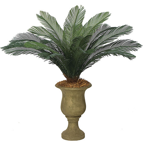 44 Inch  Cycas Palm, 18 Fronds
