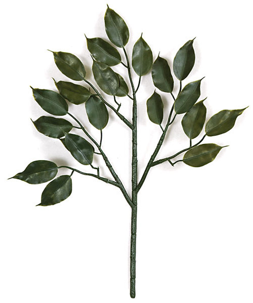 "19"" Polyblend Ficus Branch"