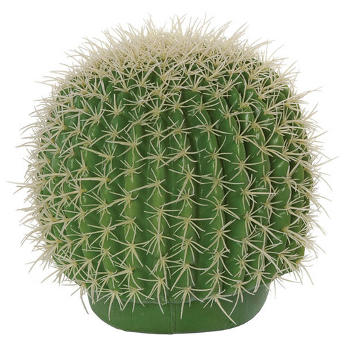 8 Inch Barrel Cactus with Needles