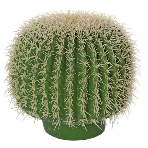 12 Inch Barrel Cactus with Needles