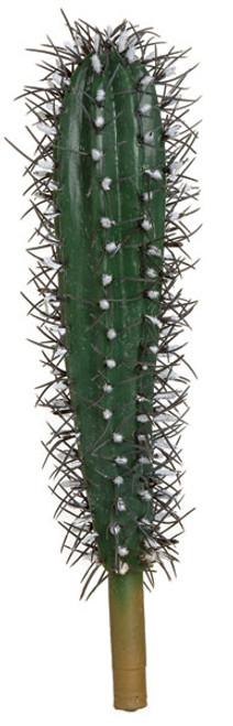 10 inch Saguaro Cactus