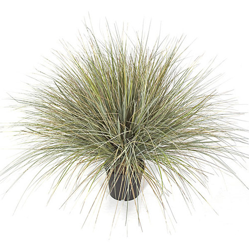 "36"" PVC Onion Grass Bush - Grey/Green"