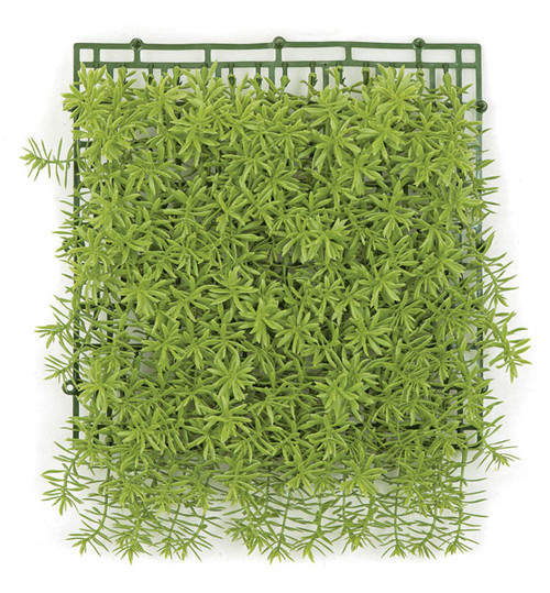 10 Inch Light Green Hanging Senecio Mat