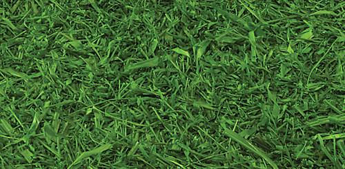 JS-0001 - Tutone Green
