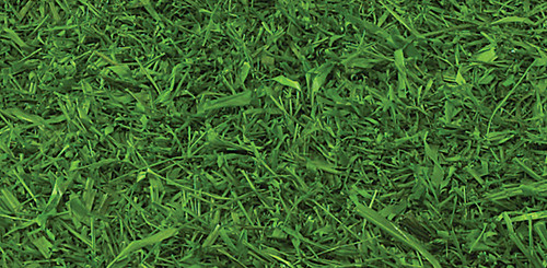 6 Ft x 3.25 Ft. IFR Artificial Raffia Grass - (Mininum Quantity is 19.5 Square Feet - Sold by Square Footage - NET Price)