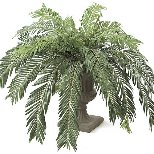 "60"" Width Silk Cycas Palm Cluster - Decorative Pot Sold Separately"
