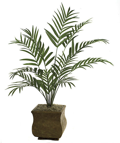 P-62731 7' Kentia Palm Tree - 12 Fronds - Decorative Planter Sold Separately