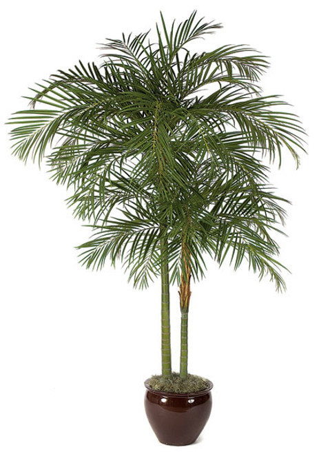 10 Foot Artificial Areca Palm Tree