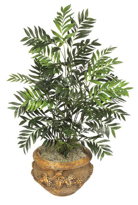 P-3402  5' Parlour Plant, Bare Stem - Decorative Pot Sold Separately