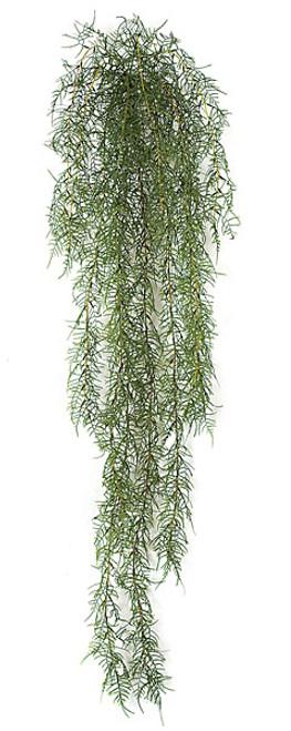 A-81070 5' Asparagus Fern Bush