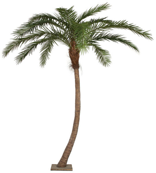 P-126520 14' Phoenix Palm Tree - Curved Trunk - PIPE ONLY - NO Base