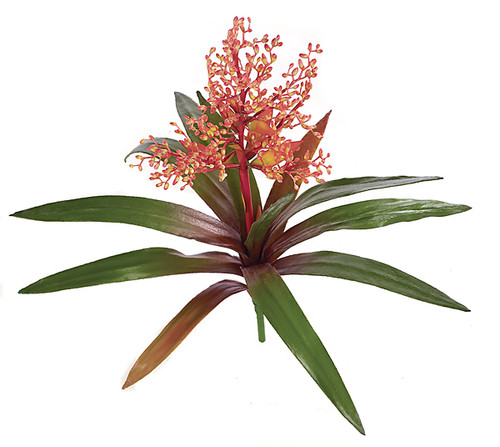 P-0250
