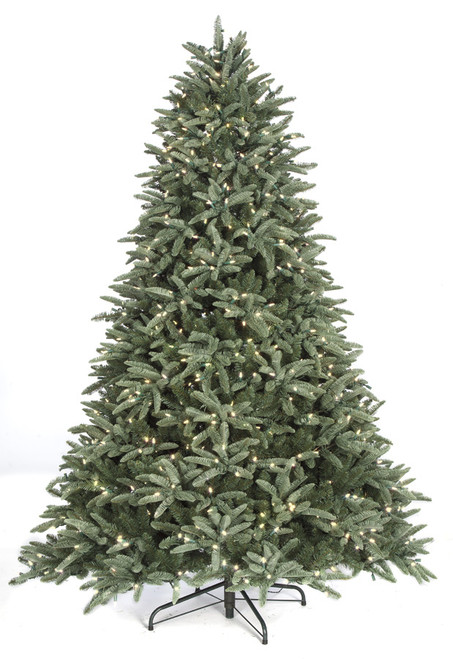 C-1613387.5'  Blue Mountain Spruce with LED Lights