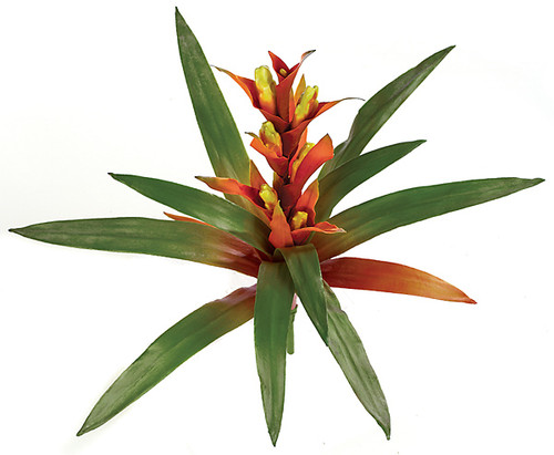 P-0485
