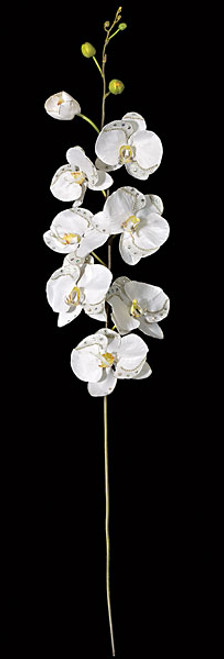 5.5 Foot Sequin/Beaded Phalaenopsis Orchid