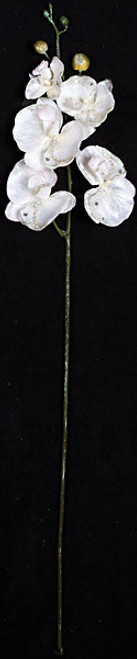 "P-9102632"" Satin/Glittered Phalaenopsis"