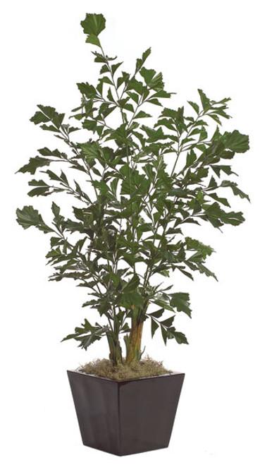 6' Fishtail Palm TreeRegular Foliage or Fire RetardantDecorative Pot Sold Separately