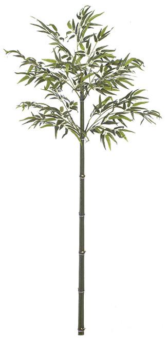 6 Foot Custom Bamboo Palm