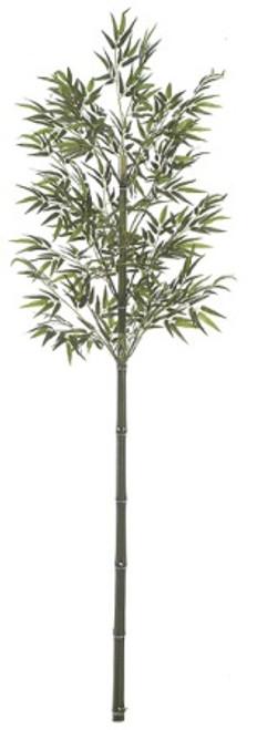 W-668077' Bamboo PalmNatural Cane