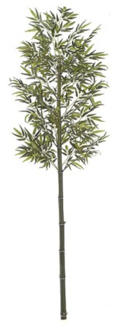 W-668088' Bamboo PalmNatural Cane