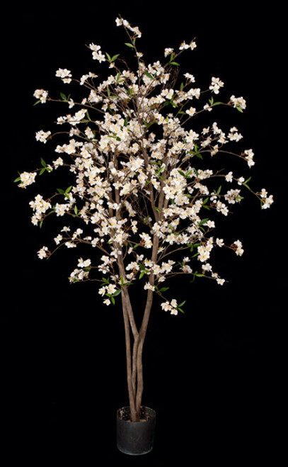 5.5 Foot Cherry Blossom Tree - Pink or Cream/White