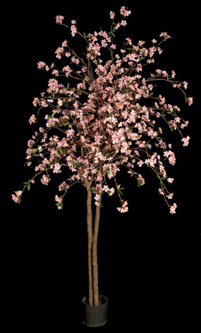 6.5 Foot Cherry Blossom Tree - Pink or Cream/White