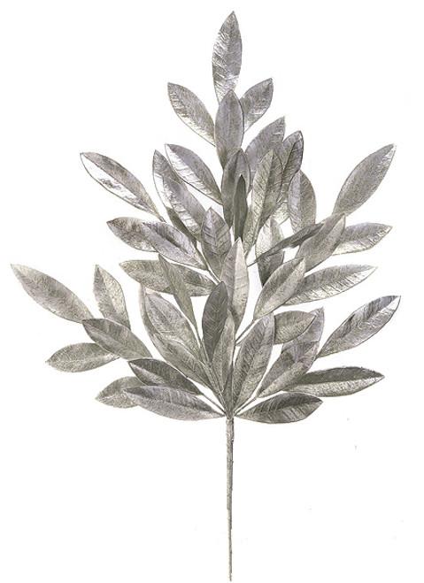 """A-6237023"""" Silver Painted Bay Leaf Spray"""
