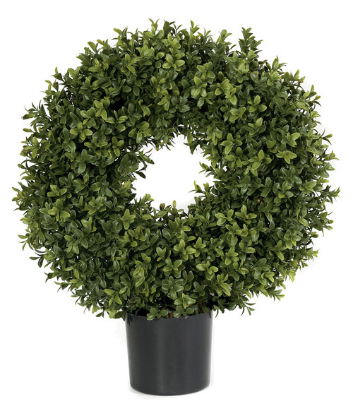 16 Inch x 20 Inch Boxwood Circle Topiary