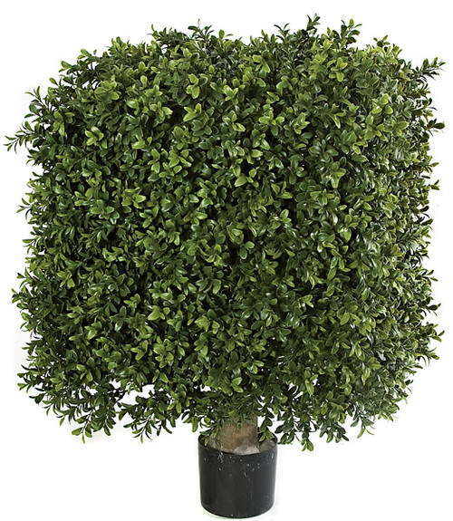 18 Inches x 25 Inches Large UV Boxwood Square Topiary