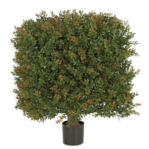 """AUV-14602021"""" x 24"""" UV Wintergreen Boxwood Square Topiary"""