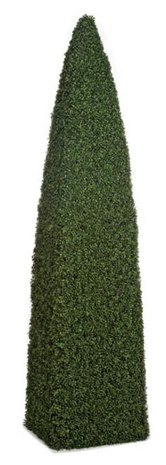 A-809508' Boxwood Cone Topiary