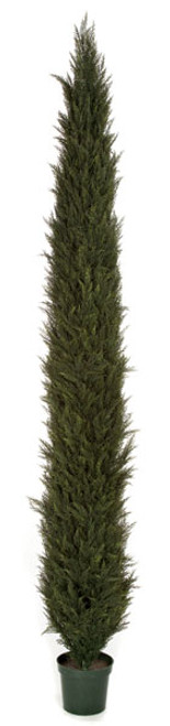 6 Foot, 8 Foot, 10 Foot or 12 Foot Outdoor UV Rated Cypress Tree