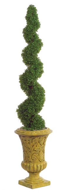 5 Foot Boxwood Spiral Topiary