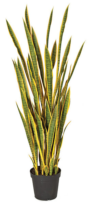 A-121150
