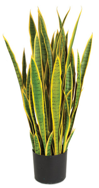A-152025
