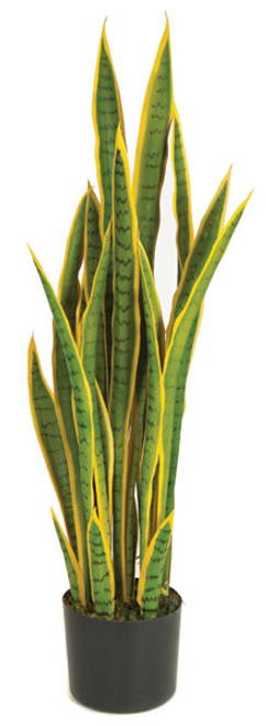 A-152020
