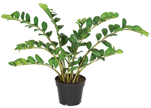 PF-5020