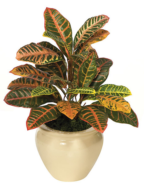 P-1120