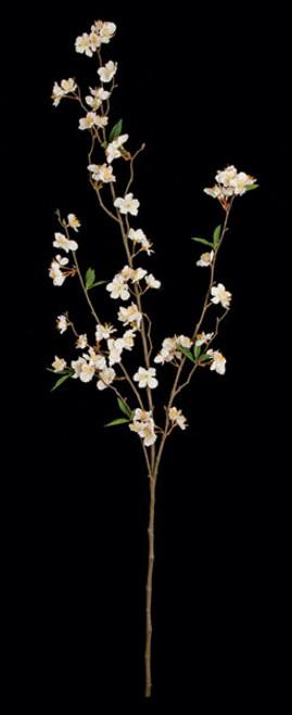 """P-15000045"""" Cherry Blossom BranchCream Color"""