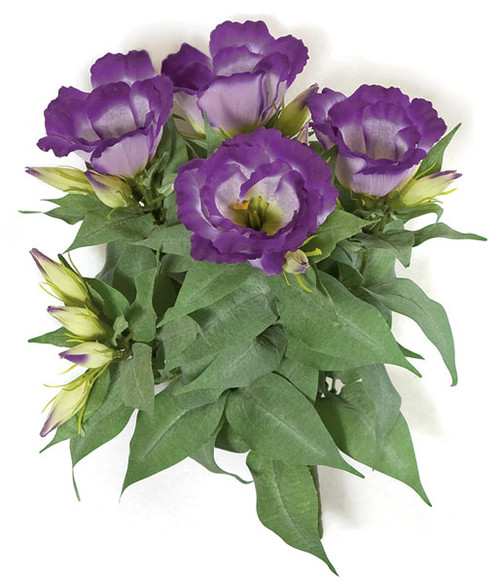 13 Inch IFR Lisianthus Bush - Pink or Purple
